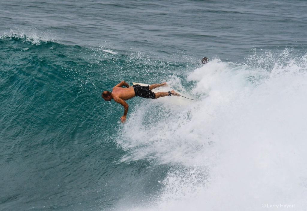 Maui Surf # 14 - ID: 15503339 © Larry Heyert