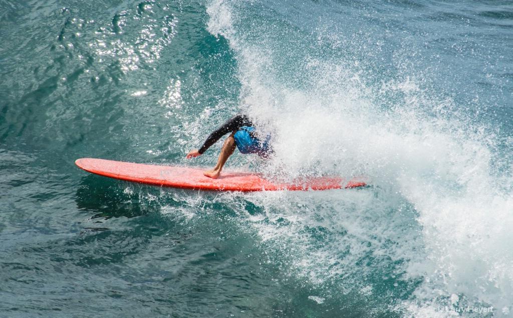Maui Surf # 22 - ID: 15503504 © Larry Heyert