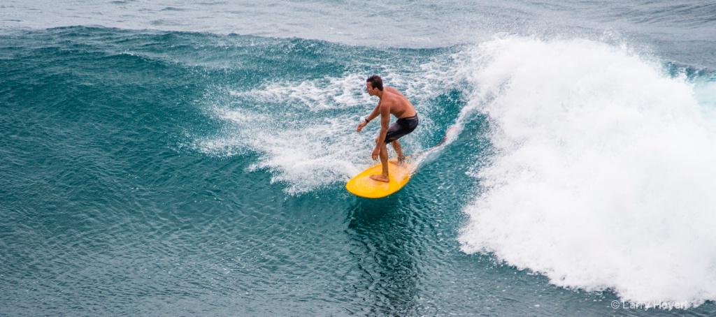 Maui Surf # 24 - ID: 15503507 © Larry Heyert