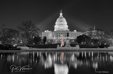 Christmas in Washington, DC