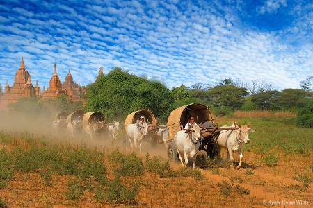 Return From Festival in Bagan