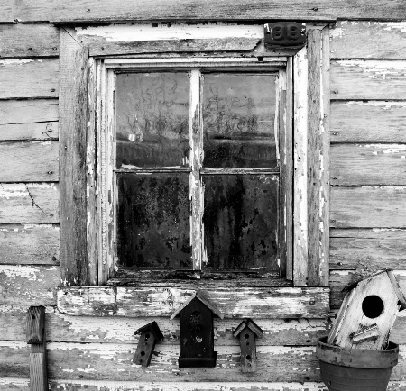 Weathered Window and Birdhouses