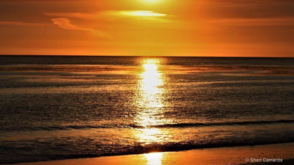 Sunset Reflection - ID: 15507073 © Sheri Camarda