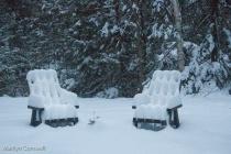 Christmas Garden in Canada