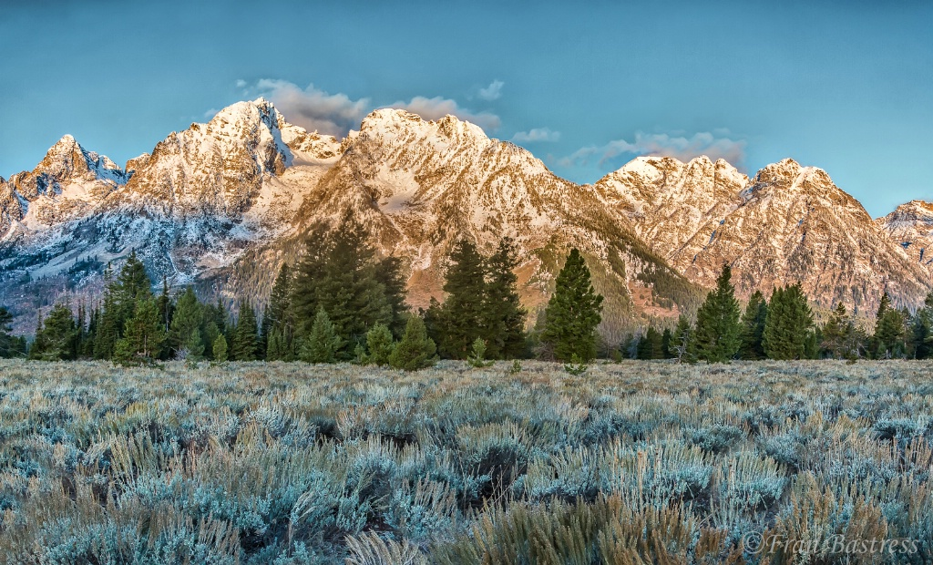 Sagebrush Field in The Tetons - ID: 15508030 © Fran  Bastress