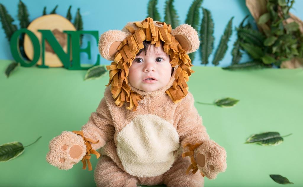 *Little Lion*