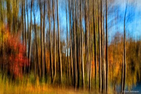 Skinny Forest Swipe 11-2-17 220