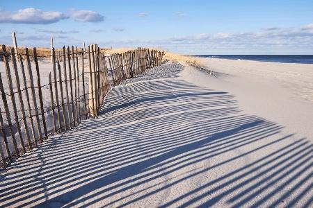 Dune Design