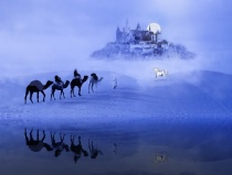 Moonrise At The Magical Oasis