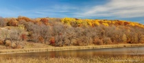 Maplewood State park in the fall