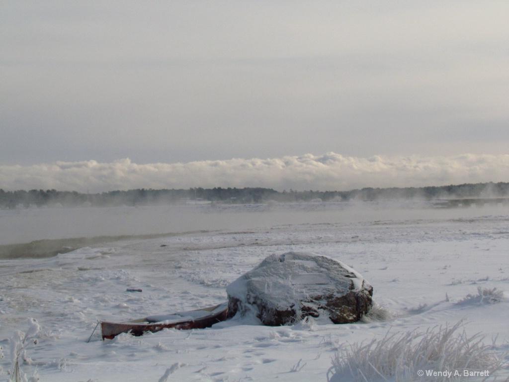 Frozen In - ID: 15516433 © Wendy A. Barrett