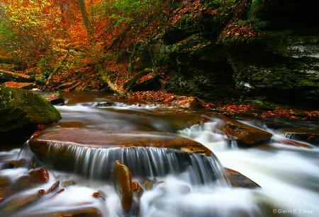 Ricketts Glen on a Autumn Day