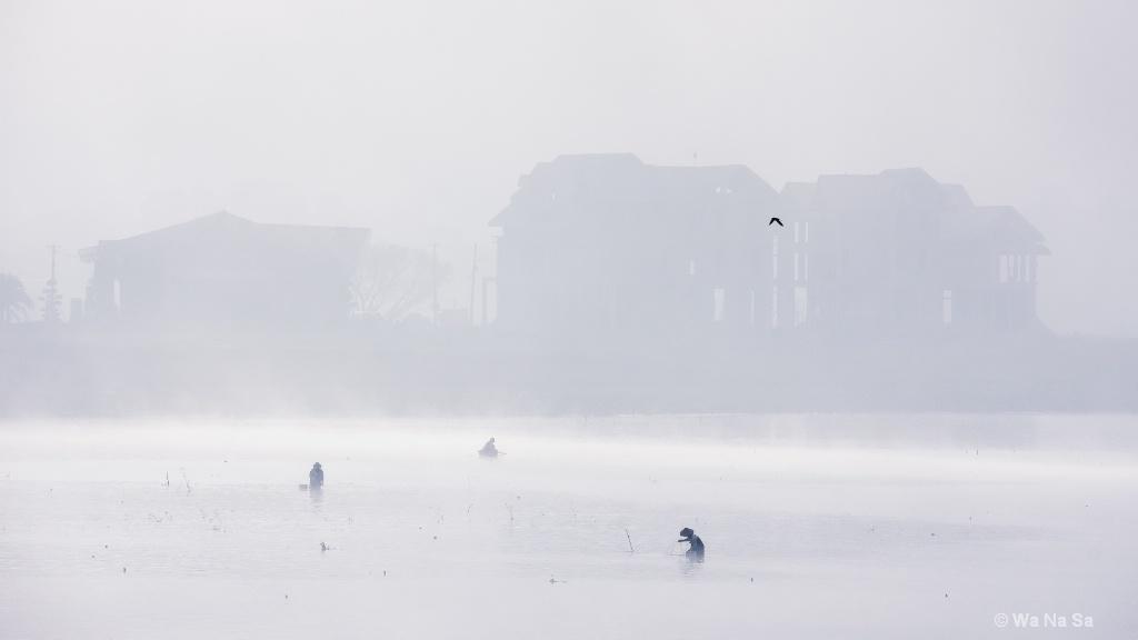 Fishing under fog.