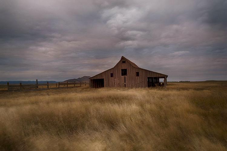 P3A6843c Fall 2017 - ID: 15521517 © Raymond E. Reiffenberger