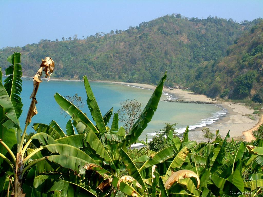 West Java Vista - ID: 15522010 © Judy Rae