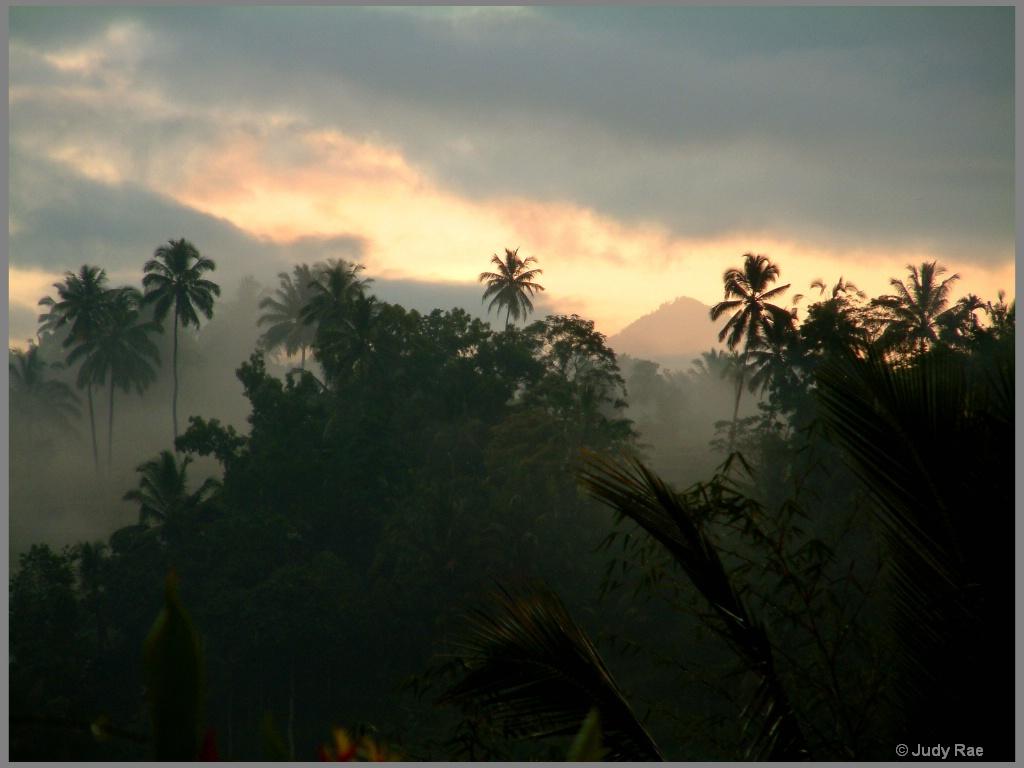 Bali Fog - ID: 15522012 © Judy Rae