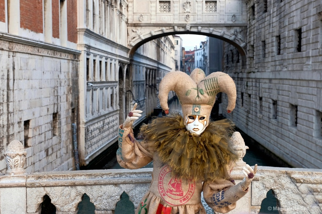 Venice Carnival: Color Series - Brown Sighs - ID: 15522993 © Magdalene Teo