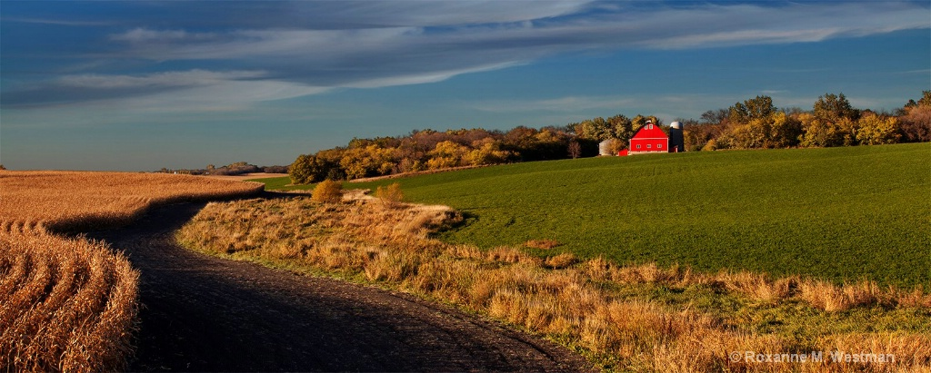 Paths to the red barn