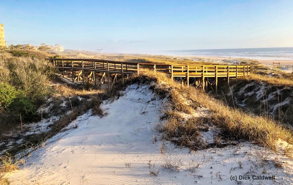 Morning Dunes in Amelia Island, Fl by Dick Caldwel