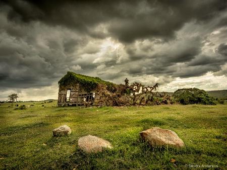 Storm Over Nukku