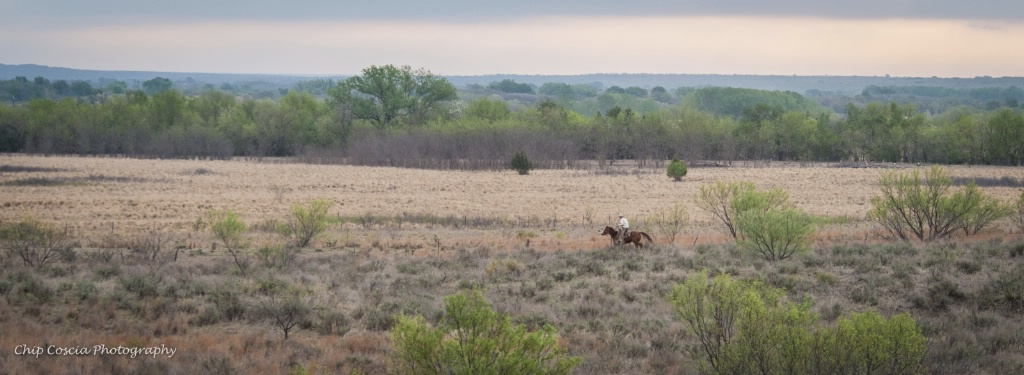 Riding The Range - ID: 15542459 © Chip Coscia