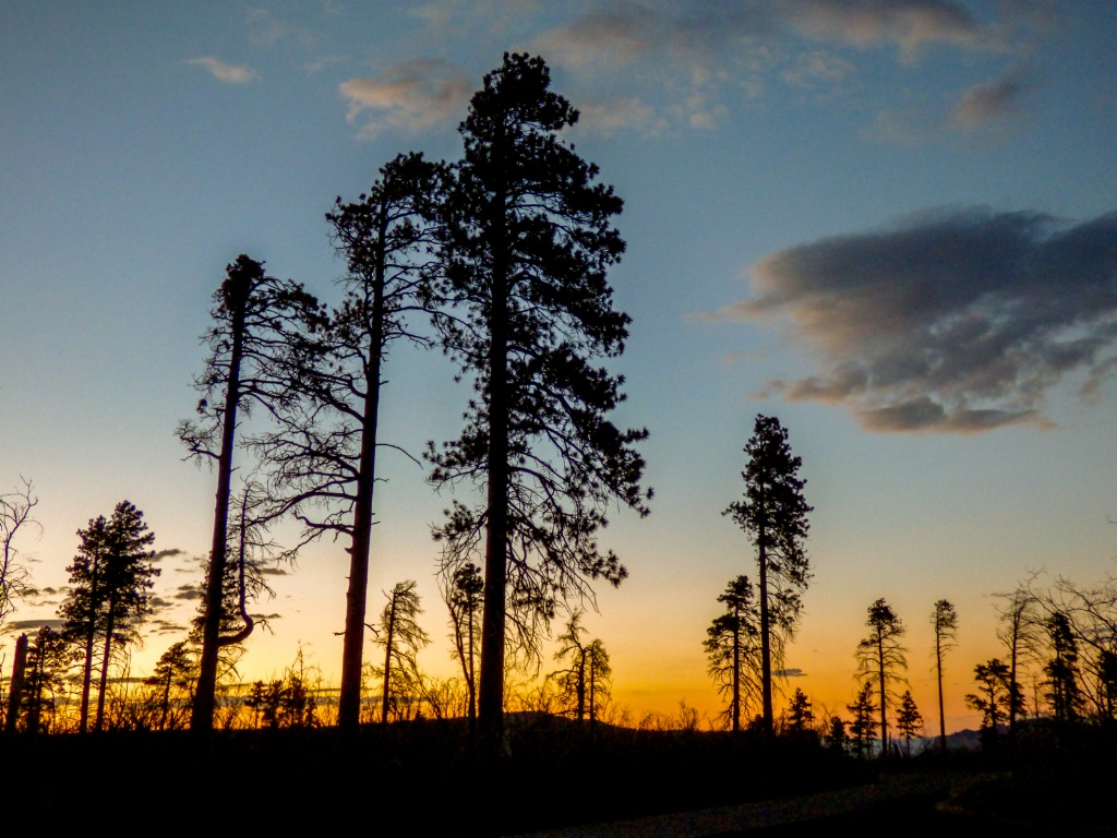 sunset near north rim  - ID: 15542886 © Nancy Auestad