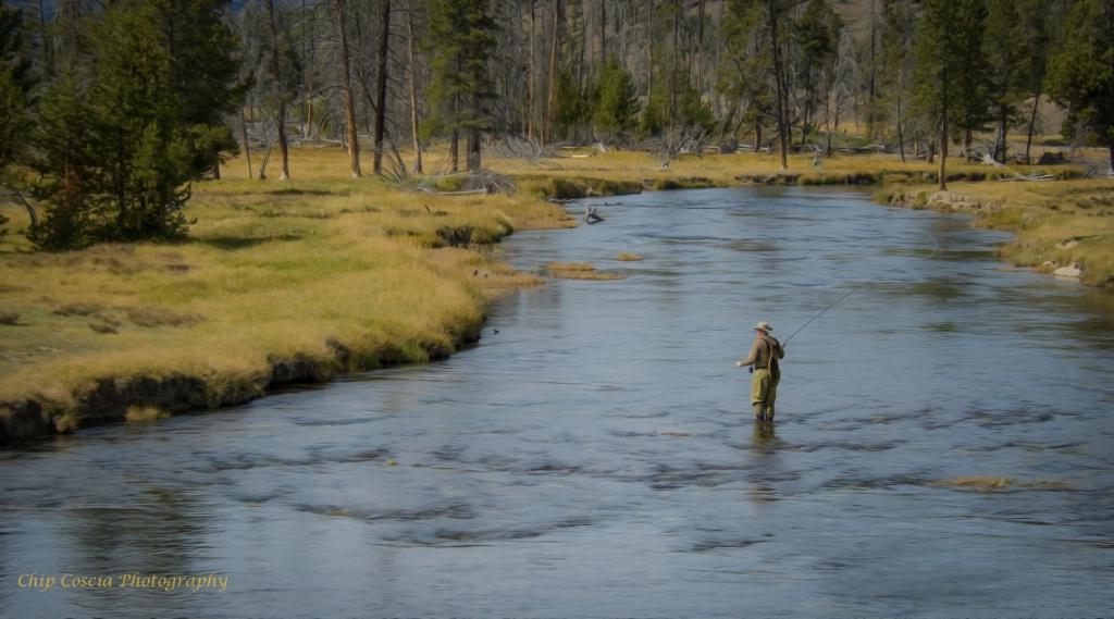 Yellowstone Fisherman - ID: 15543442 © Chip Coscia