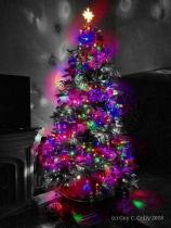 One Last Look, Christmas 2017