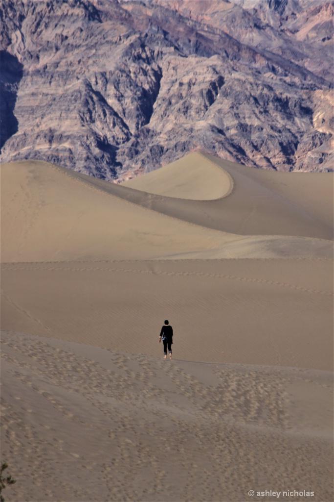 The Dunes - ID: 15547980 © ashley nicholas