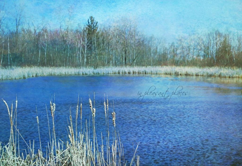 Rippled Marsh
