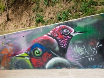 Street Art # 9-  Communa 13