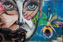 Street Art # 11-  Communa 13