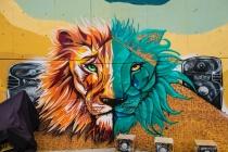 Street Art # 18-  Communa 13