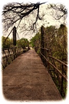 "-----""Bluff Dale Suspension Bridge""------"