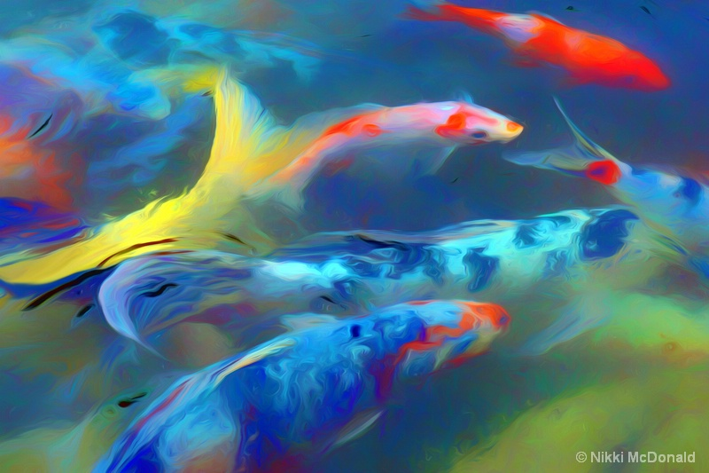 Koi Abstract