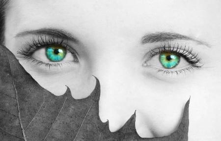 Sara's Eyes