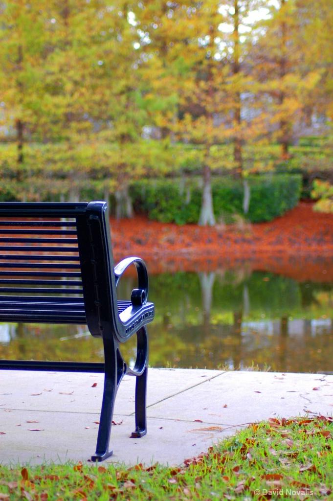 Fall in Baldwin Park