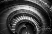 Vatican Spiral St...