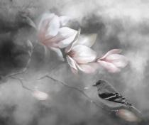Whisper of Petals