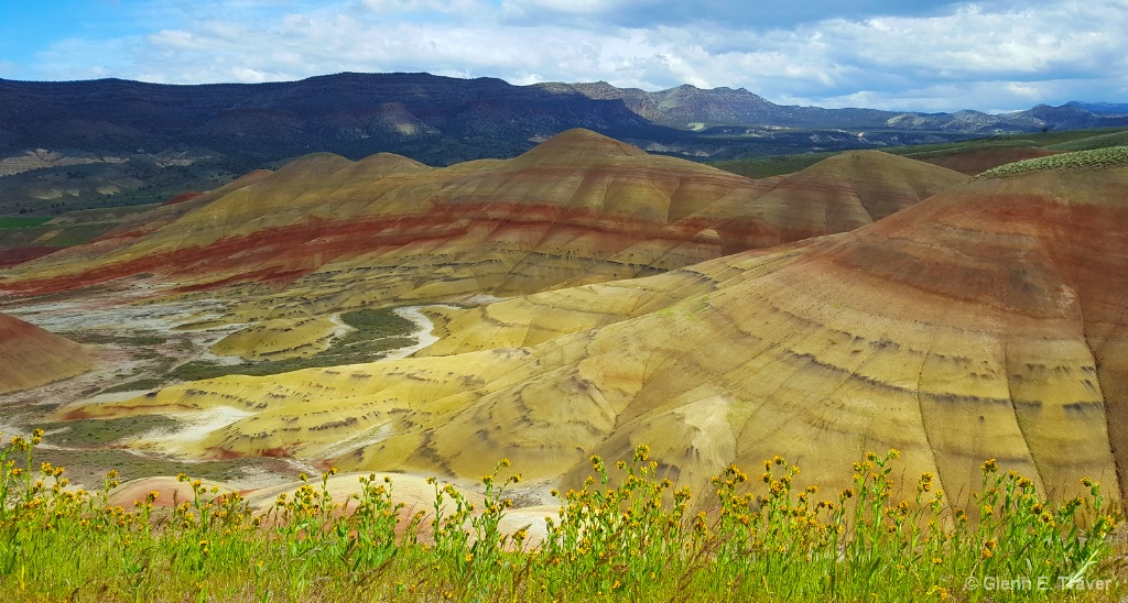The Painted Hills on a Flowery Morning