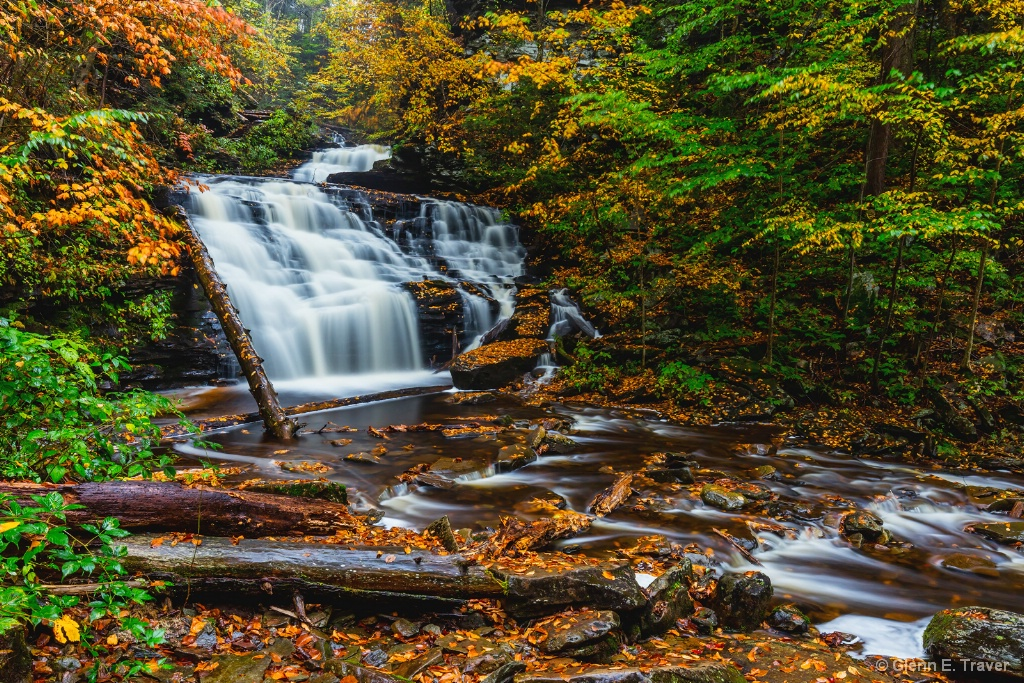Ricketts Glen Autumn Morning