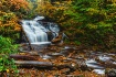 Ricketts Glen Aut...