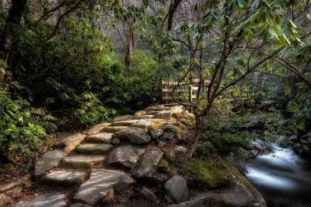 The Trail to Chimney Tops