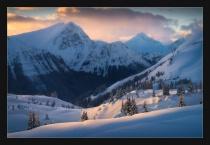 Alpine Snapshot.