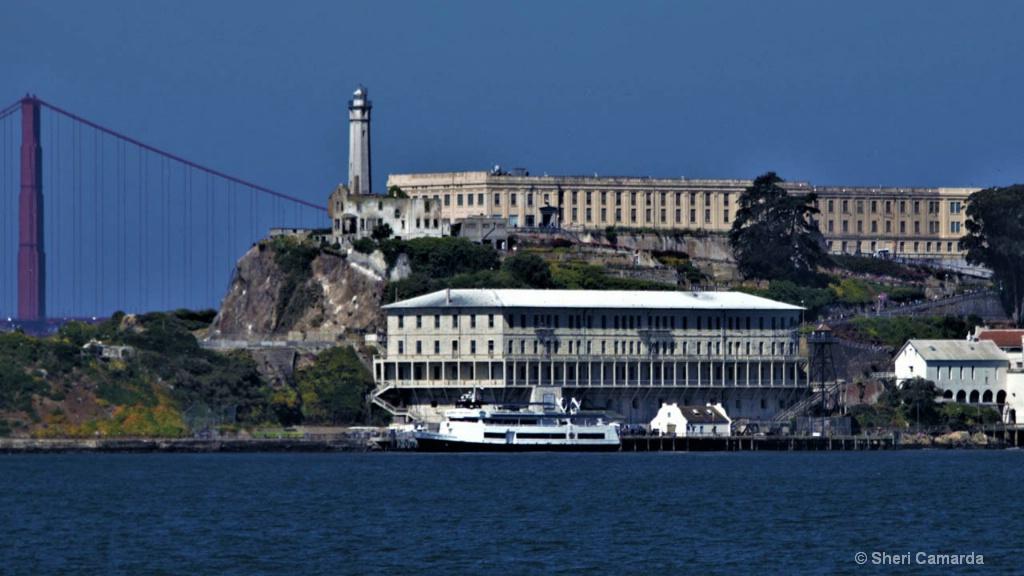 Alcatraz - ID: 15583308 © Sheri Camarda