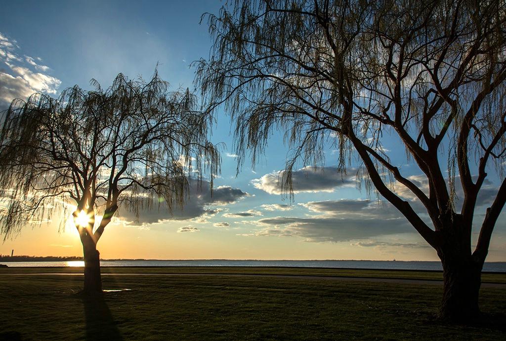 - ID: 15583313 © Dreaming Tree Galleries