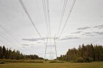Power Lines Leading To The Horizon