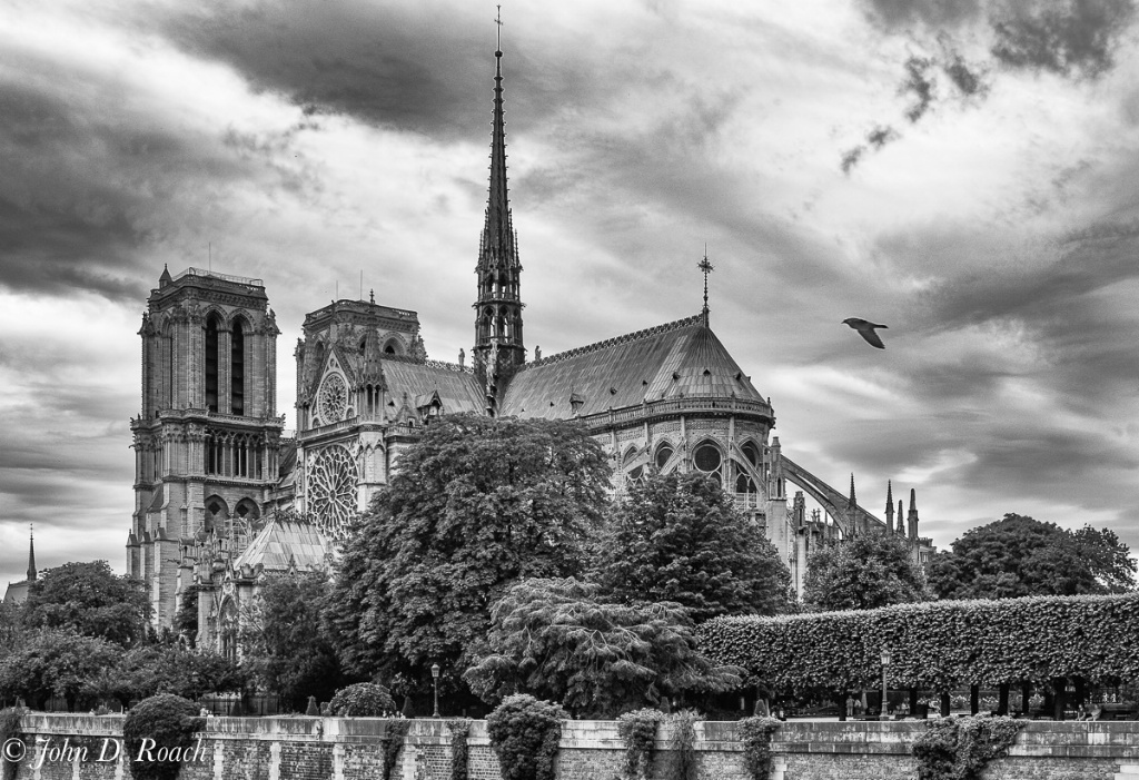 Notre Dame seen from banks of the Seine - ID: 15586861 © John D. Roach