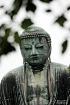 The Great Buddha ...