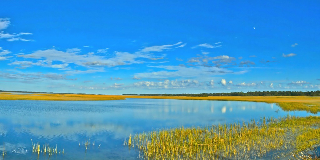 Marsh at Kiawah Island #1 - ID: 15592205 © Zelia F. Frick